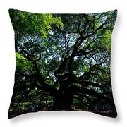 The Angel Oak In Summer Throw Pillow