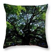 The Angel Oak In Summer Throw Pillow