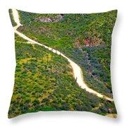 The Apache Trail Throw Pillow