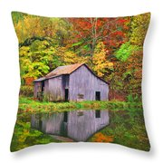 The Appalachian Reflection Throw Pillow