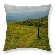The Appalachian Trail Crossing Max Patch Throw Pillow