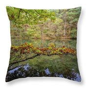The Arsenic Lake Devon Great Consols Throw Pillow