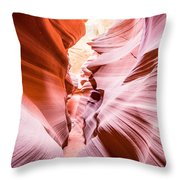 The Art Of Chaos Throw Pillow