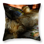 The  Art Of Relaxation Throw Pillow