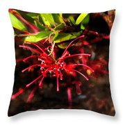 The Art Of Spider Flower Throw Pillow