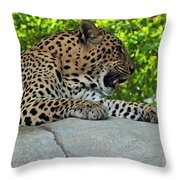 The Assassin Throw Pillow