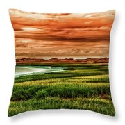 The Atlantic White Cedar Swamp Trail Throw Pillow