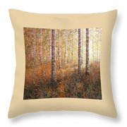 The Autumn Sun In The Birch Forest Throw Pillow