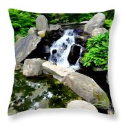 The Babbling Brook Throw Pillow