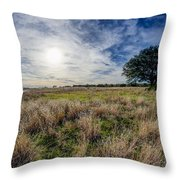 The Back Forty II Throw Pillow