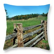The Back Forty Throw Pillow