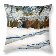 The Back Road Throw Pillow
