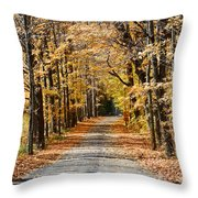 The Back Road In Autumn Throw Pillow