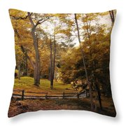 The Back Way Throw Pillow