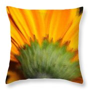 The Backside Throw Pillow