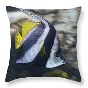 The Bannerfish Throw Pillow