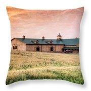 The Barn II Throw Pillow