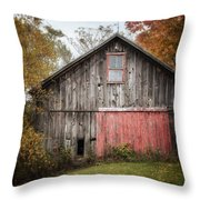 The Barn With The Red Door Throw Pillow