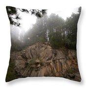The Basalt Rose 1 Throw Pillow