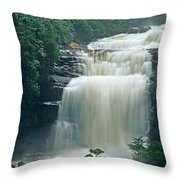 The Base Of Angel Falls In Canaima National Park Venezuela Throw Pillow