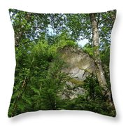 The Base Of Beacon Rock  Throw Pillow