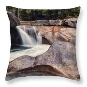 The Basin Pano Throw Pillow