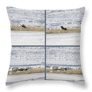 The Bath Of A Magpie Throw Pillow