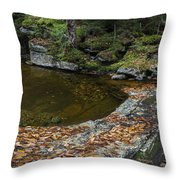 The Bathtub On Garfield Stream Throw Pillow