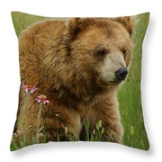 The Bear 1 Dry Brushed Throw Pillow