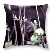 The Bearcub And The Dandelion Throw Pillow