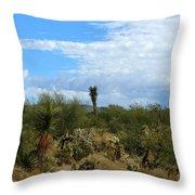 The Beautiful Desert I Love Throw Pillow