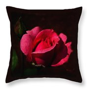 The Beauty In The Garden Of The Neighbor Throw Pillow