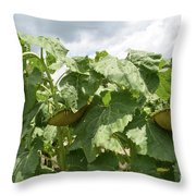 The Beautiful Three Throw Pillow