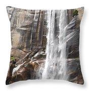 The Beautiful Venral Fall Throw Pillow