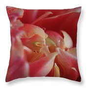 The Beauty Inside Throw Pillow by Tracy Hall