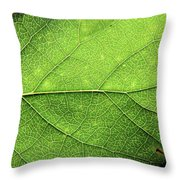 The Beauty Of A Leaf Throw Pillow