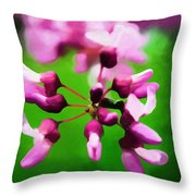 The Beauty Of A Photographer Throw Pillow