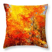 The  Beauty Of Autumn Throw Pillow