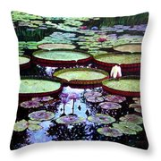 The Beauty Of Stillness Throw Pillow