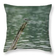 The Beauty Of The Nature Throw Pillow