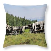 The Beauty Of Tincup Throw Pillow