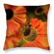 The Bee And The Helenium Throw Pillow