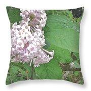 The Bee Landing Throw Pillow