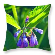 The Bells Of Ireland Throw Pillow