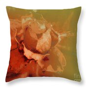 The Best Days Are Over Throw Pillow