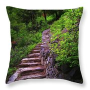 The Best Way Up Throw Pillow
