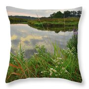The Big Bend Of The Nippersink Throw Pillow
