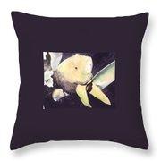 The Big Fish Throw Pillow