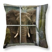 The Big Guest Throw Pillow