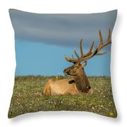 The Big Guy Resting Throw Pillow